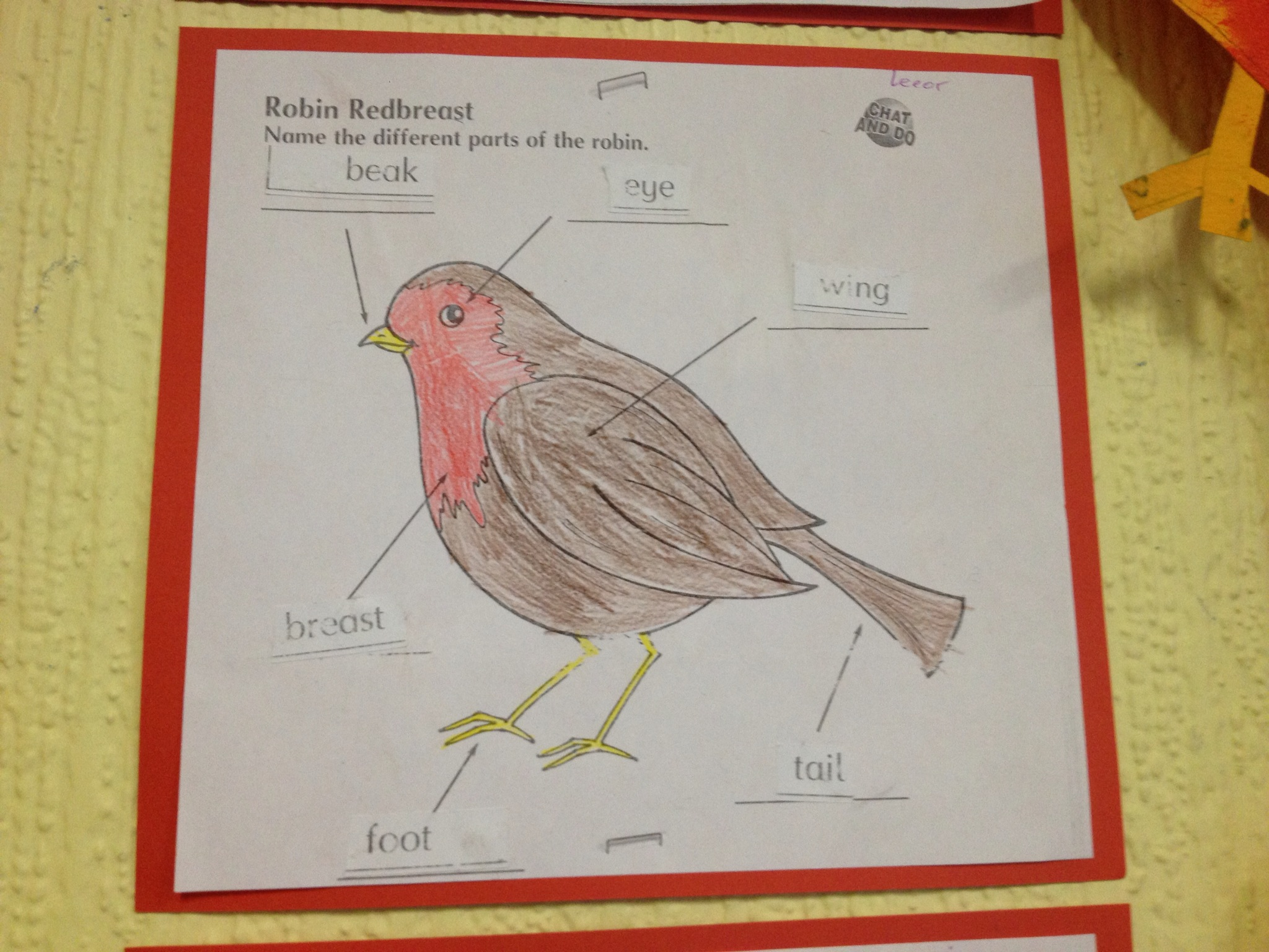 Independent learning Robin